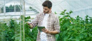 PDR2020: Instalação de Jovens Agricultores